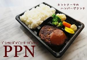 PPN②.jpg
